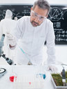 Chemistry laboratory experiment close up of a scientist in a lab analyzing colorful liquids on a lab table Royalty Free Stock Images