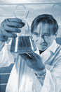 Chemistry scientist Royalty Free Stock Photos