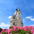 Chenonceaux castle in France Stock Images