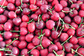 Cherries background of the red with stem Royalty Free Stock Images