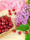 Cherries in a basket and a blooming branch of lilac