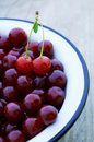 Cherries in the Bowl. Stock Images