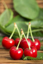 Cherries and branch with leaves studio shot Stock Image