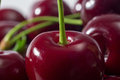 Cherries close up of fresh Stock Image