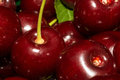 Cherries close up of fresh Stock Images