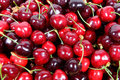 Cherries close up of lot of Stock Photos