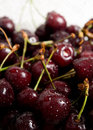 The cherries closeup with drops of water Royalty Free Stock Photo