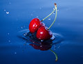 Cherries falls in water Royalty Free Stock Images