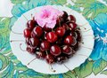 Cherries and flower closeup picture of fresh red an pink Stock Photo