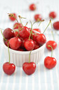 Cherries fresh organic red with stems Royalty Free Stock Photo