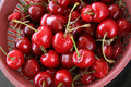 Cherries fruit Royalty Free Stock Image