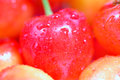 Cherries macro background Royalty Free Stock Photo