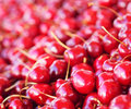 Cherries a pile of fresh and red Stock Images