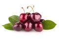 Cherries ripe on white background Stock Photos