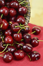 Cherries spilled from a basket Royalty Free Stock Image