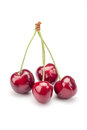 Cherries on white Royalty Free Stock Photo