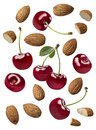 Cherry almond composition set isolated on white background Royalty Free Stock Photo