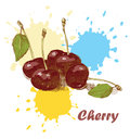 Cherry background Stock Images