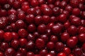 Cherry background Royalty Free Stock Photo