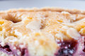 Cherry Bakewell Tart Royalty Free Stock Photo