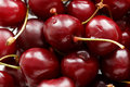 Cherry berries close up of fresh ripe Stock Images