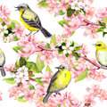 Cherry blossom - apple, sakura flowers, birds. Floral seamless pattern. Watercolor Royalty Free Stock Photo