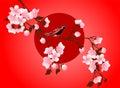 Cherry blossom art picture. Vector sakura flower Royalty Free Stock Photo
