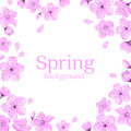 Cherry Blossom Frame Greeting Card Template