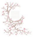 Cherry blossom frame hand drawn tree with copy space for yor text Royalty Free Stock Images