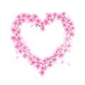 Cherry Blossom Heart Royalty Free Stock Photo