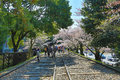 Cherry Blossom at Keage incline, Kyoto in Japan