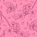 Cherry blossom pattern spring seamless Royalty Free Stock Photos