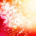 Cherry blossoms background on red and orange gradient Royalty Free Stock Photos