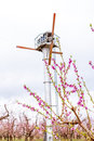 Cherry blossoms and propeller used for frost control Royalty Free Stock Photography