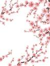 Cherry Blossoms. Sakura flowers Background. EPS 10