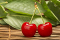 Cherry branch with leaves two cherries close up studio shot Royalty Free Stock Photo