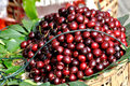 Cherry in deep color Royalty Free Stock Photography