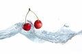 Cherry dropped into water splash on white Stock Image