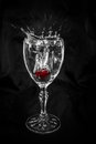 Cherry dropping in wine glass frozen the full of wate Stock Photography