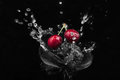 Cherry falling into the water on a black background Royalty Free Stock Image