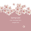 Cherry flowers blossom spring card Vector illustration. Delicate decor for anniversary, wedding, birthday, events. Royalty Free Stock Photo