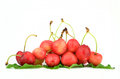 Cherry fruit wet fruits with green leaf on white background Royalty Free Stock Photography