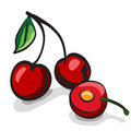 Cherry fruits sketch drawing set on white Stock Images