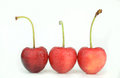 Cherry fruits wet on white background Royalty Free Stock Images