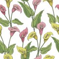 Callas flower graphic color seamless pattern background sketch illustration vector