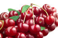 Cherry isolated on white background Royalty Free Stock Image
