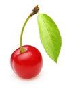 Cherry isolated Royalty Free Stock Photo