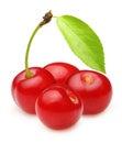 Cherry isolated on white background Stock Image