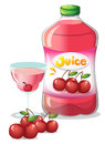 Cherry juice drink illustration of the on a white background Stock Photography