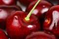 Cherry macro background Royalty Free Stock Images